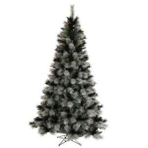 Vickerman 16692   6.5 x 43 Black Ash 400 Purple Lights