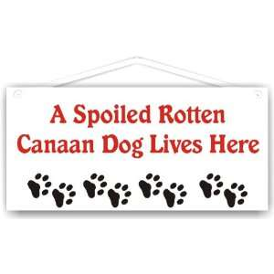 Spoiled Rotten Canaan Dog Lives Here