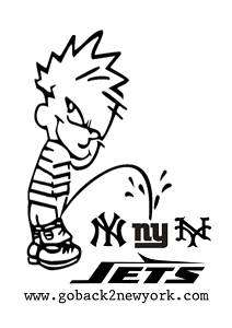 New York Yankees Jets Mets Giants Hater NY sucks shirt