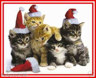 Cat, Kitten Magnets Collectible Christmas Gifts Kitty