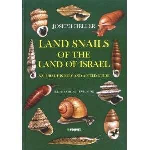 ) (9789546425102) Joseph Heller, Tuvia Kurz, Zeev Arad Books