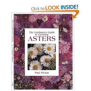Gardeners Guide to Growing Asters (9780715318850): Paul