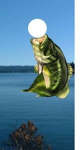 Large Mouth Bass Cornhole game decal wrap