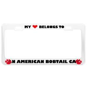 An American Bobtail Cat Pet White Metal License Plate Frame Tag Holder