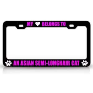 MY HEART BELONGS TO AN ASIAN SEMI LONGHAIR Cat Pet Auto License Plate