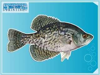 BLACK CRAPPIE fishing vinyl decal FISH Sicker  