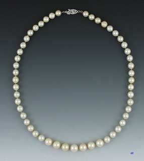 Lovely 14K White Gold Graduated Pearl Strand Necklace