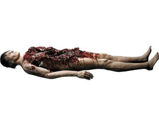 Autopsy Body Prop   Haunted House Props   15DU1169