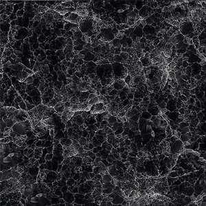 Florentine Marble 12 x 18 Florentine Marble Black Vinyl Flooring