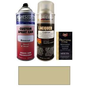 12.5 Oz. Warm Silver Metallic Spray Can Paint Kit for 2000