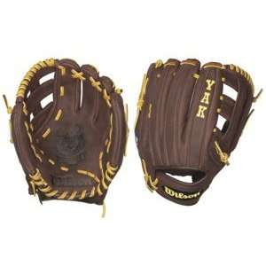 Wilson Yak WTA1502BBDW5 Baseball Glove Sports & Outdoors