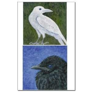 Crow Baby White Crow White crow Mini Poster Print by