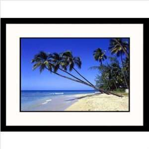 Palm Trees on Ocean Beach Frame Finish Black, Size 23 x