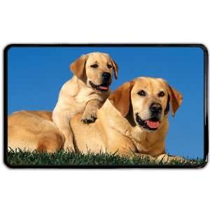 Dogs golden labrador Kindle Fire snap on Case / Cover for