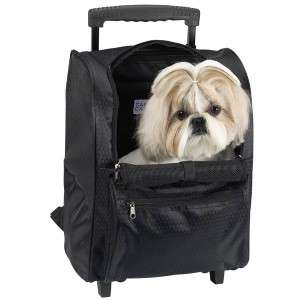 Casual Canine Deluxe Backpack Pet Carrier On Wheels BLK
